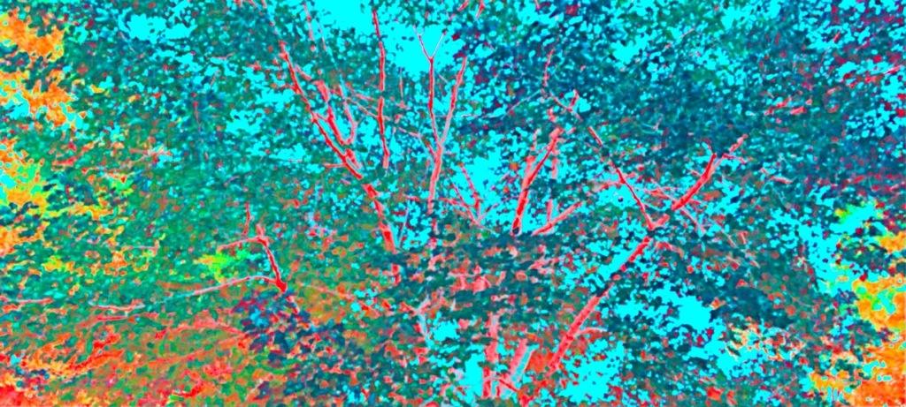 20140130-185408.jpg