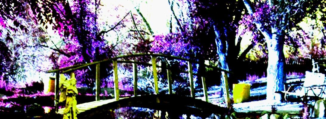 Transition Copyright 2015, Julie K. Shavin